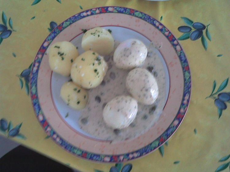 Wachsweiche eier in petersilien kapern sauce ein - Eier kochen dauer ...