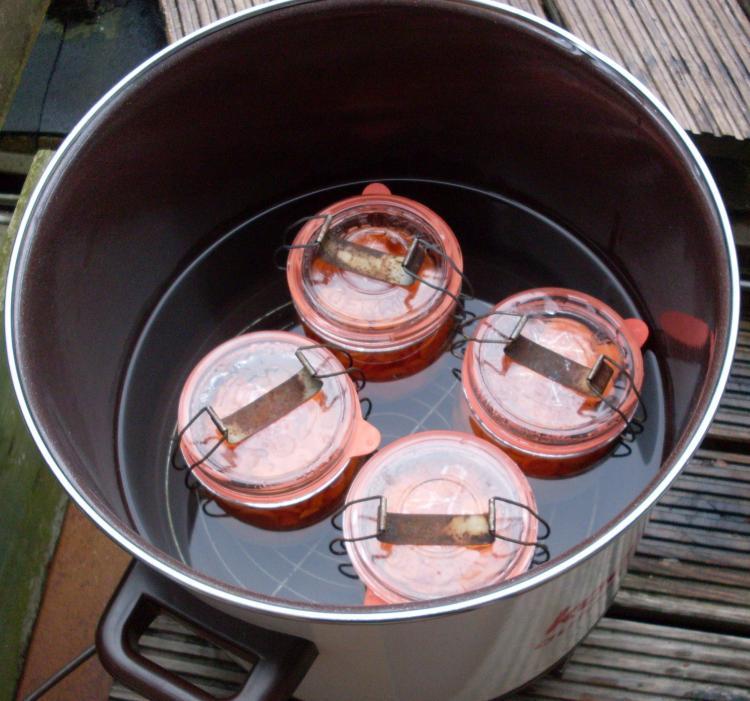 Möhren (Karotten) einkochen