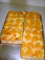Blechkuchen mit Marillen